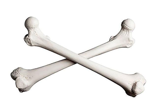 Diet & Bone Health