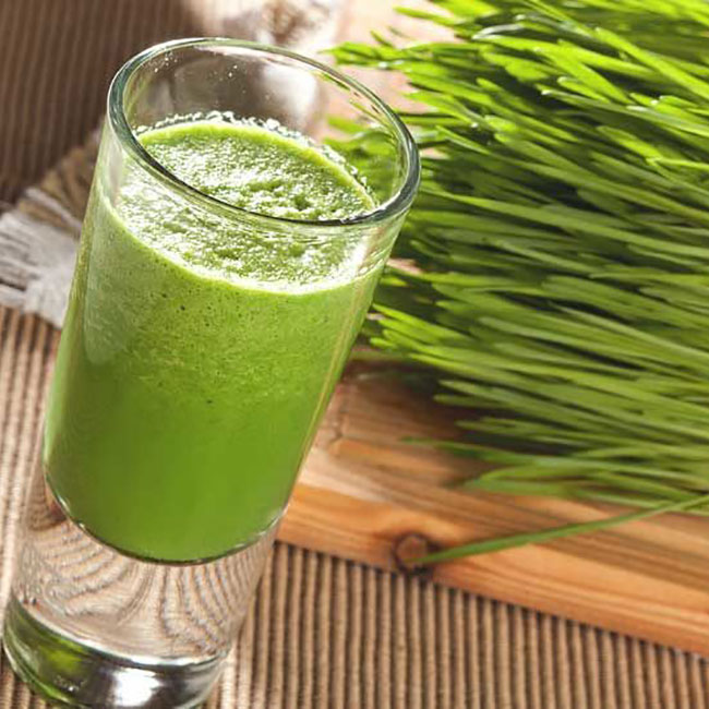 Wheatgrass: Where to get it, how to take it and it's any Health Benefits