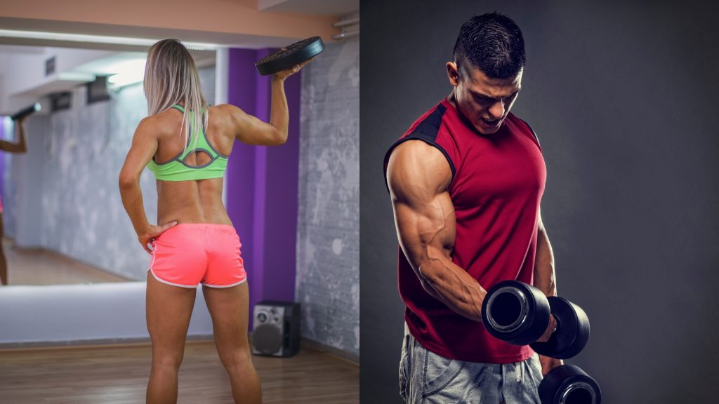 Build and Maintain Strong Muscles